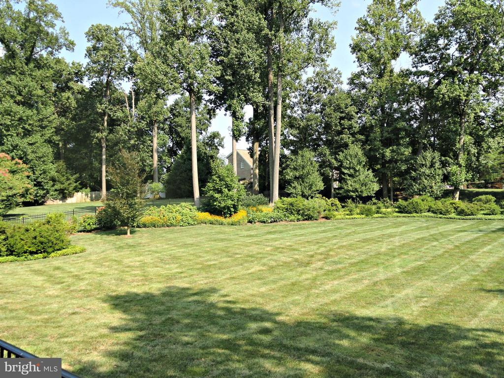 Rear lawn with myriads of perennials - 1353 WOODSIDE DR, MCLEAN