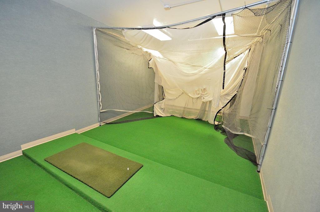 Greensboro golf practice net photo - 8340 GREENSBORO DR #814, MCLEAN