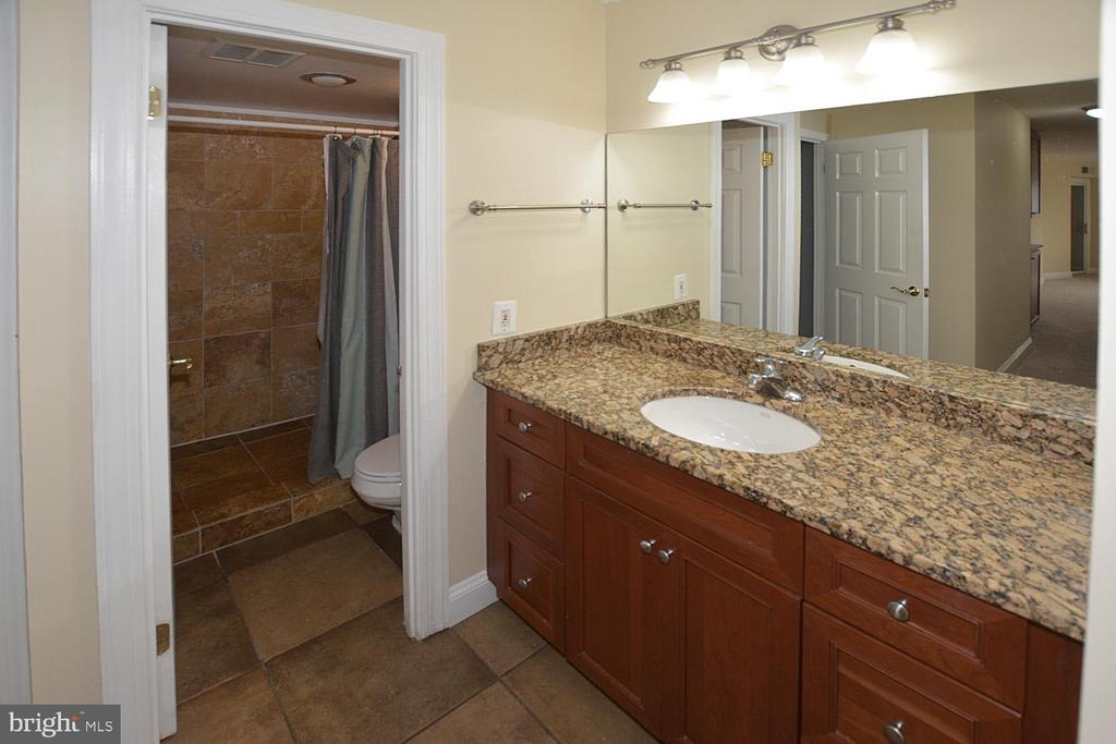 Greensboro master bath photo - 8340 GREENSBORO DR #814, MCLEAN