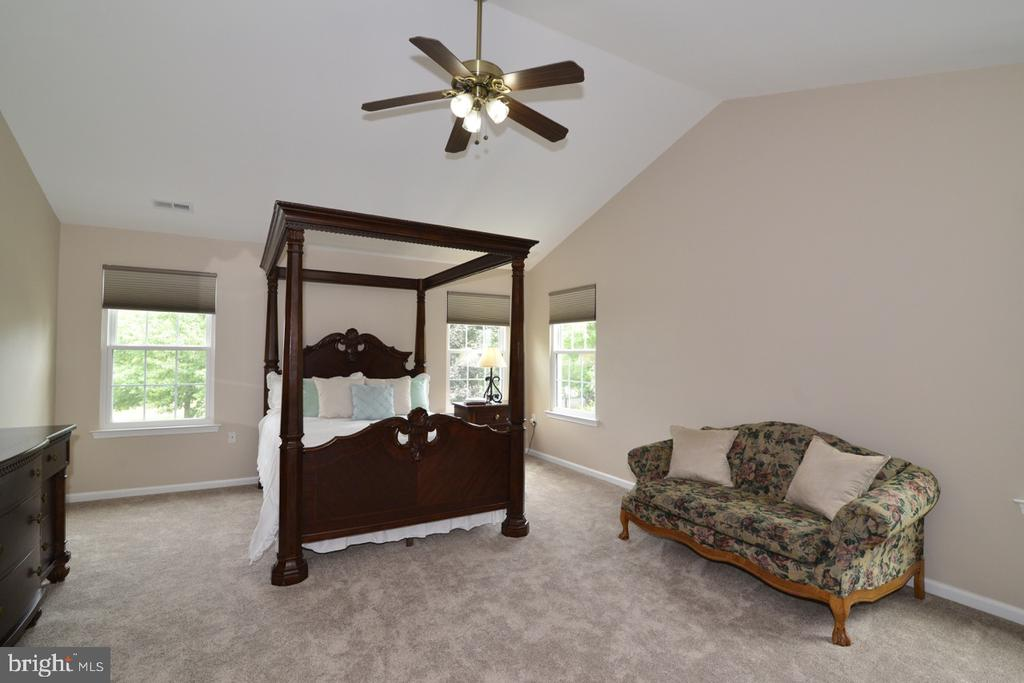 Spacious master bedroom with vaulted ceiling. - 1308 FEATHERSTONE LN NE, LEESBURG