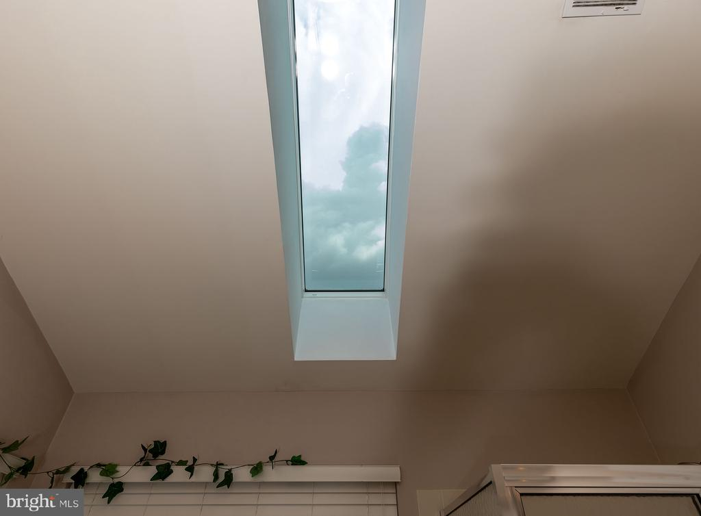 Skylight in Master Bath - 42476 MANDOLIN ST, CHANTILLY
