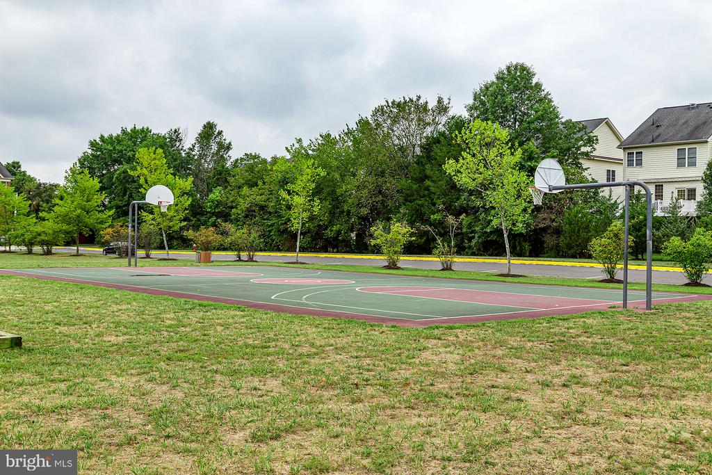 Basketball  Court - 42476 MANDOLIN ST, CHANTILLY
