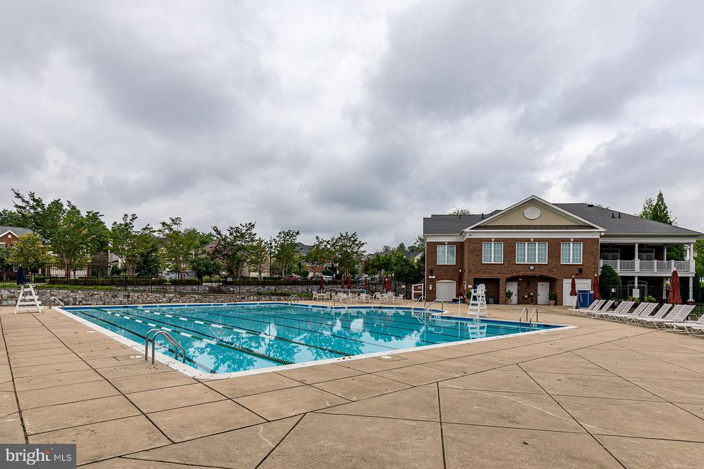 Community Pool - 42476 MANDOLIN ST, CHANTILLY