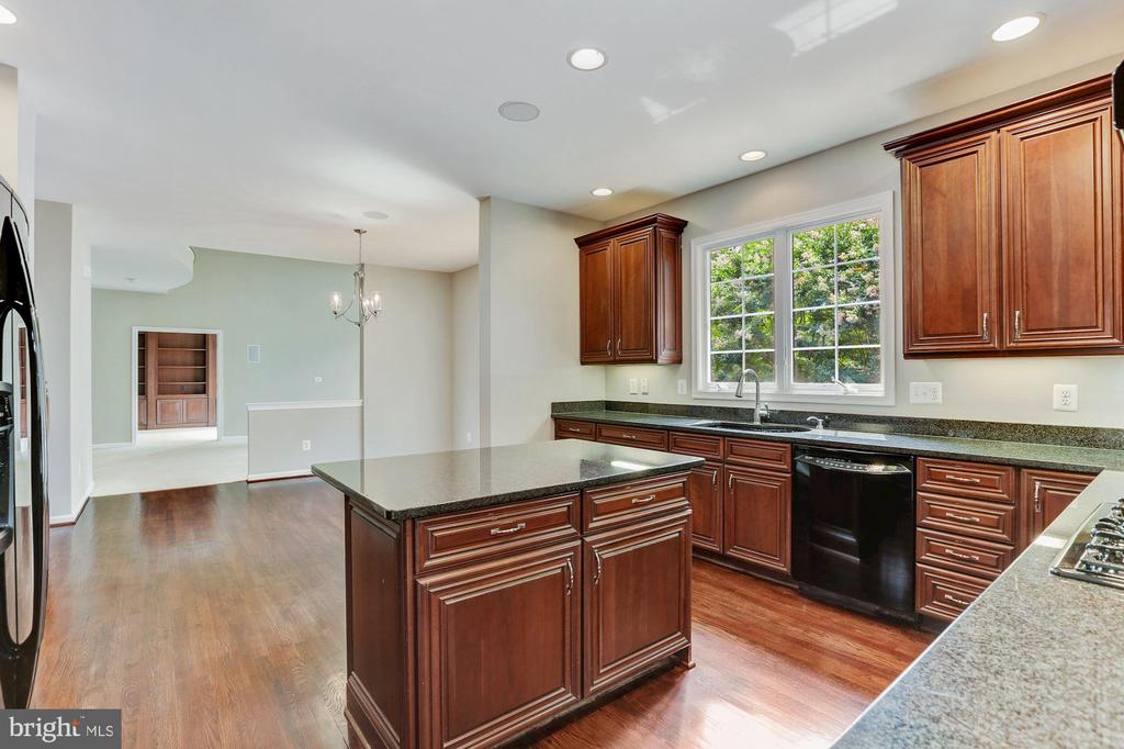 Lots of Natural Sunlight - 20141 BLACKWOLF RUN PL, ASHBURN