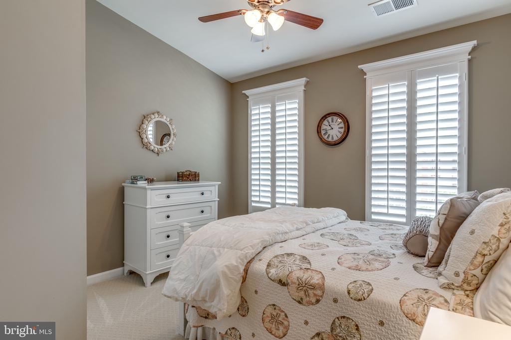 Sunny bedroom 2 with Ceiling Fan - 20062 NORTHVILLE HILLS TER, ASHBURN