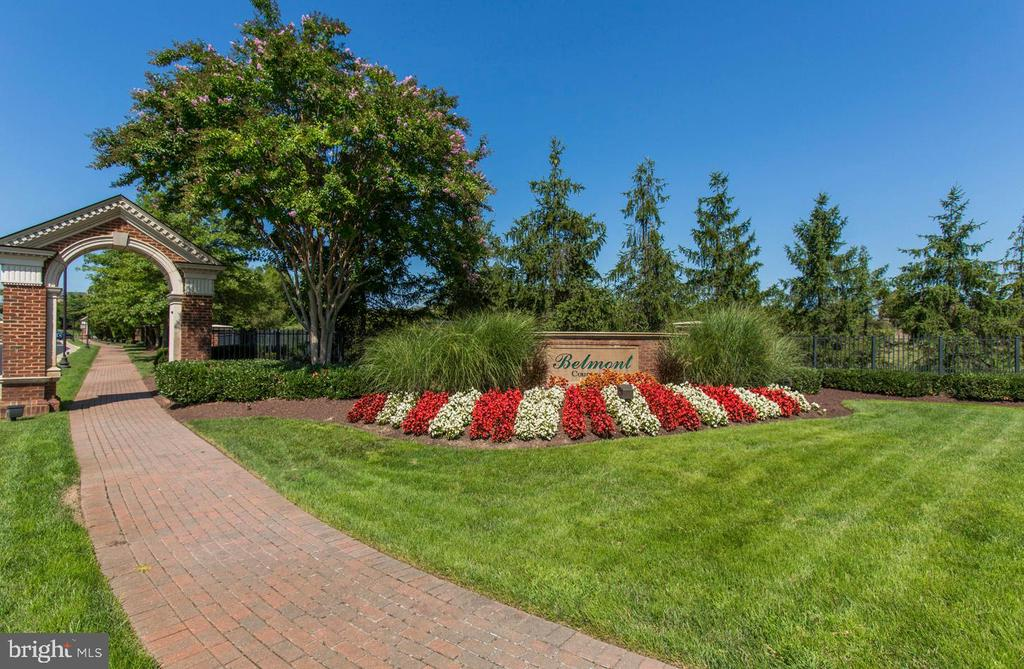 Gorgeous Landscaping - 20141 BLACKWOLF RUN PL, ASHBURN