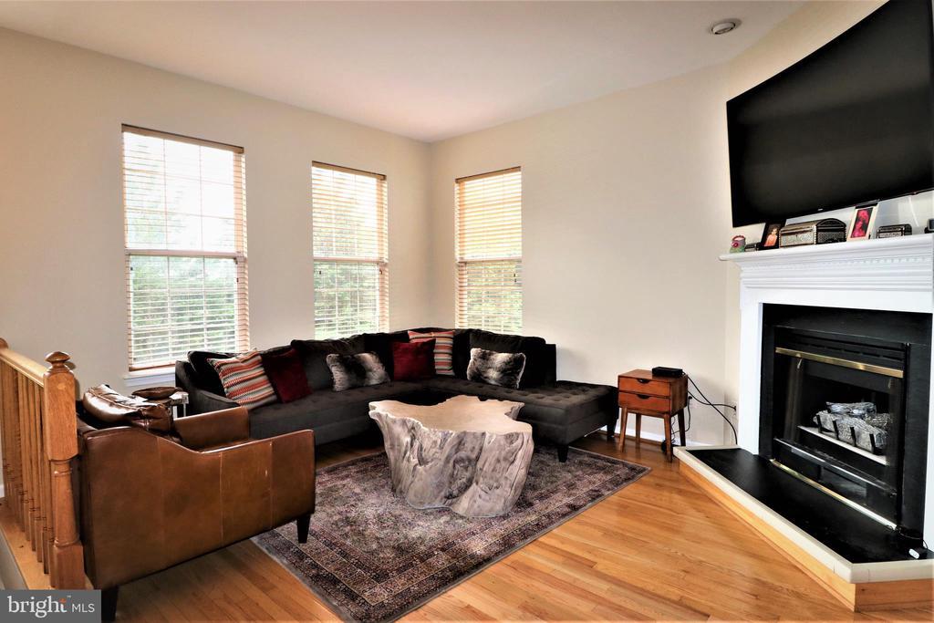 Living Room - 12023 EDGEMERE CIR, RESTON
