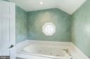 Master Bath soaking Tub - 4838 1ST ST S, ARLINGTON
