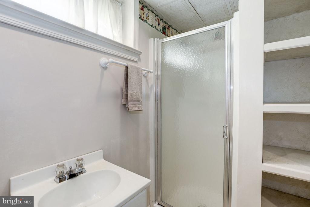 Lower level Bathroom - 4838 1ST ST S, ARLINGTON