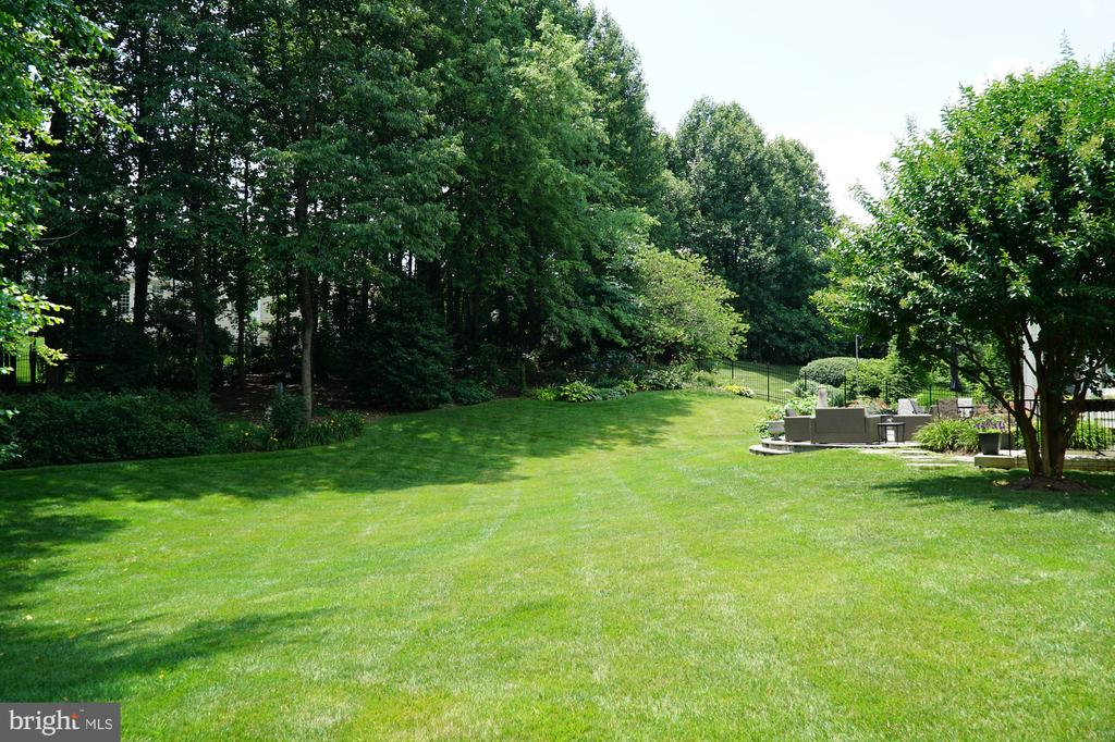 Beautifully maintained yard - 11691 CARIS GLENNE DR, HERNDON