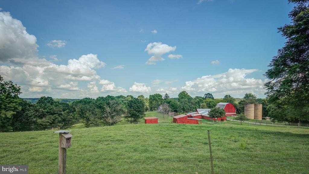 Farm Acreage View - 38978 GOOSE CREEK LN, LEESBURG