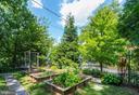 Vegetable garden - 3610 QUEBEC ST NW, WASHINGTON
