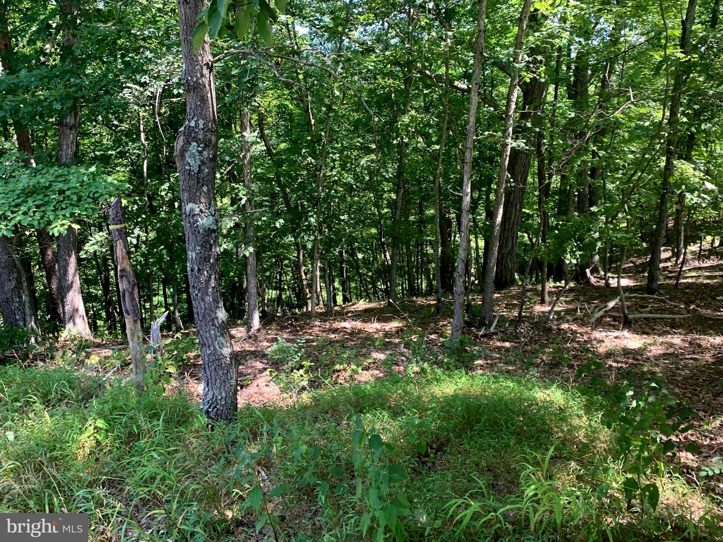 Additional photo for property listing at  Burlington, Virginie-Occidentale 26710 États-Unis