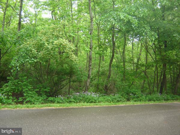أراضي للـ Sale في Milford, Virginia 22514 United States