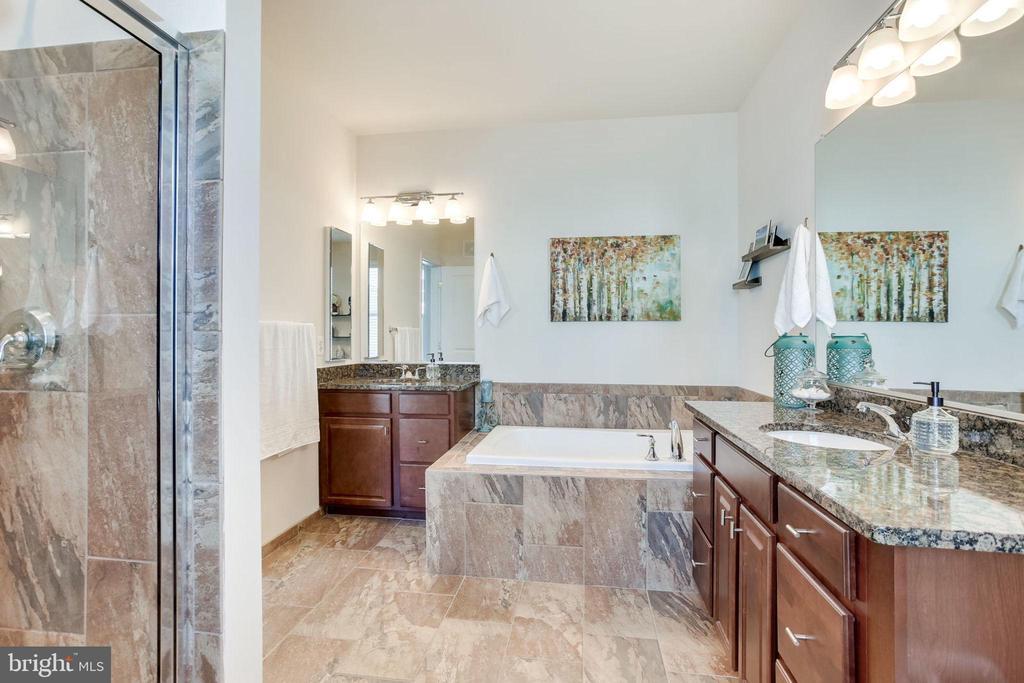 Master bathroom with separate vanities - 24556 ROSEBAY TER, ALDIE
