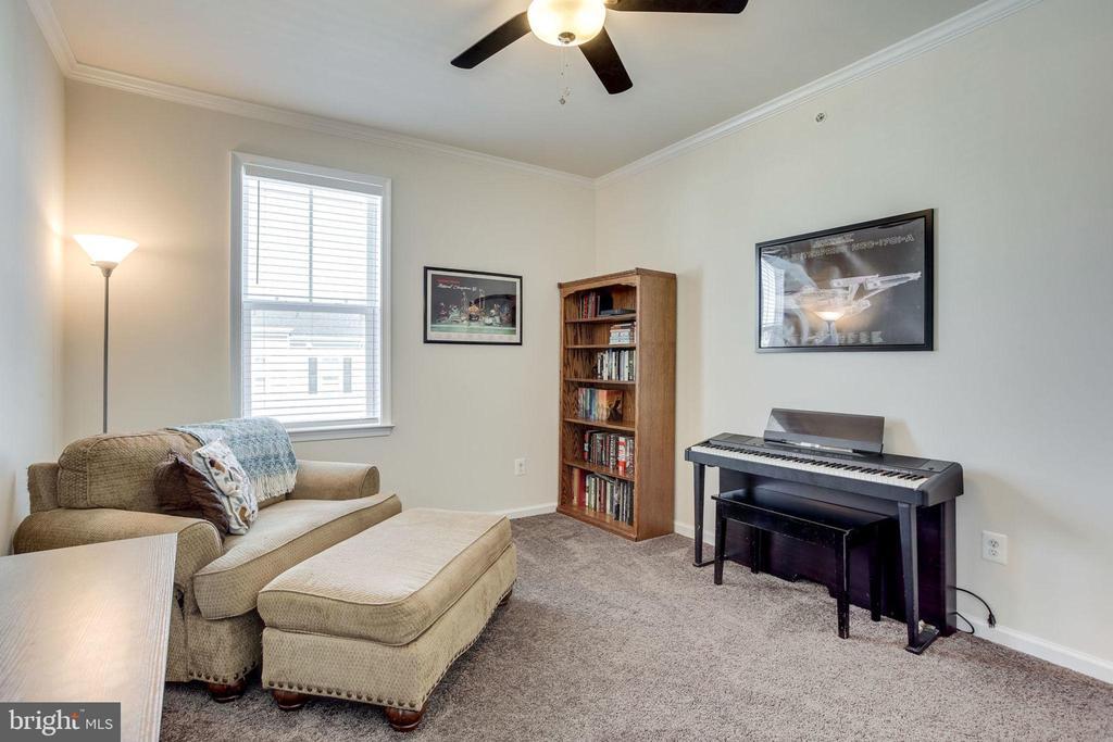 Ceiling fan/light in all bedrooms - 24556 ROSEBAY TER, ALDIE