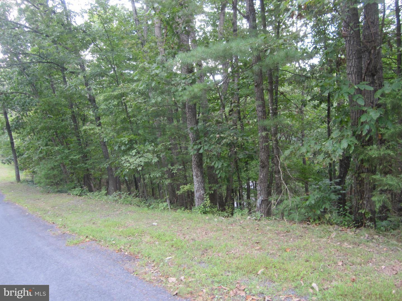 Property 용 임대 에 NO VICKIE WAY Basye, 버지니아 22810 미국