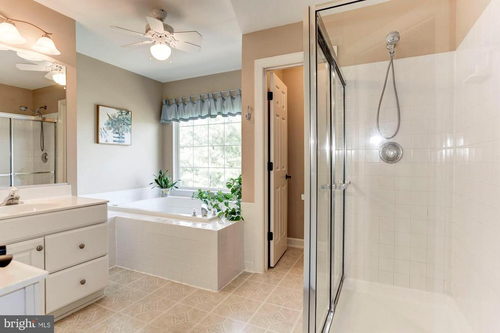 Master Bathroom - Separate shower + soaking tub! - 42956 OHARA CT, ASHBURN