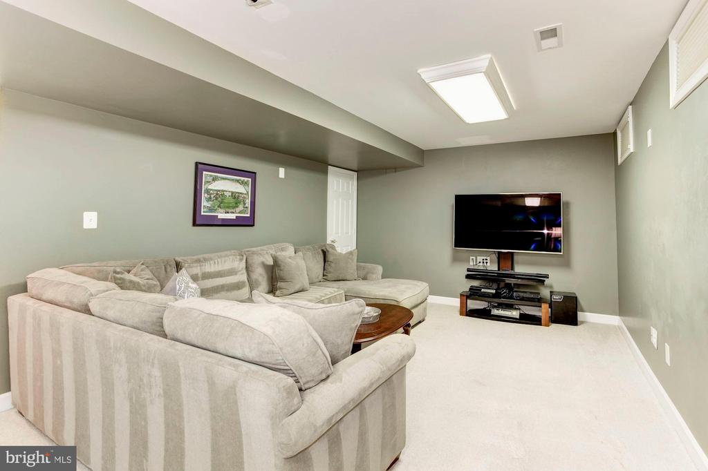Lower Level Recreation Room - 42956 OHARA CT, ASHBURN