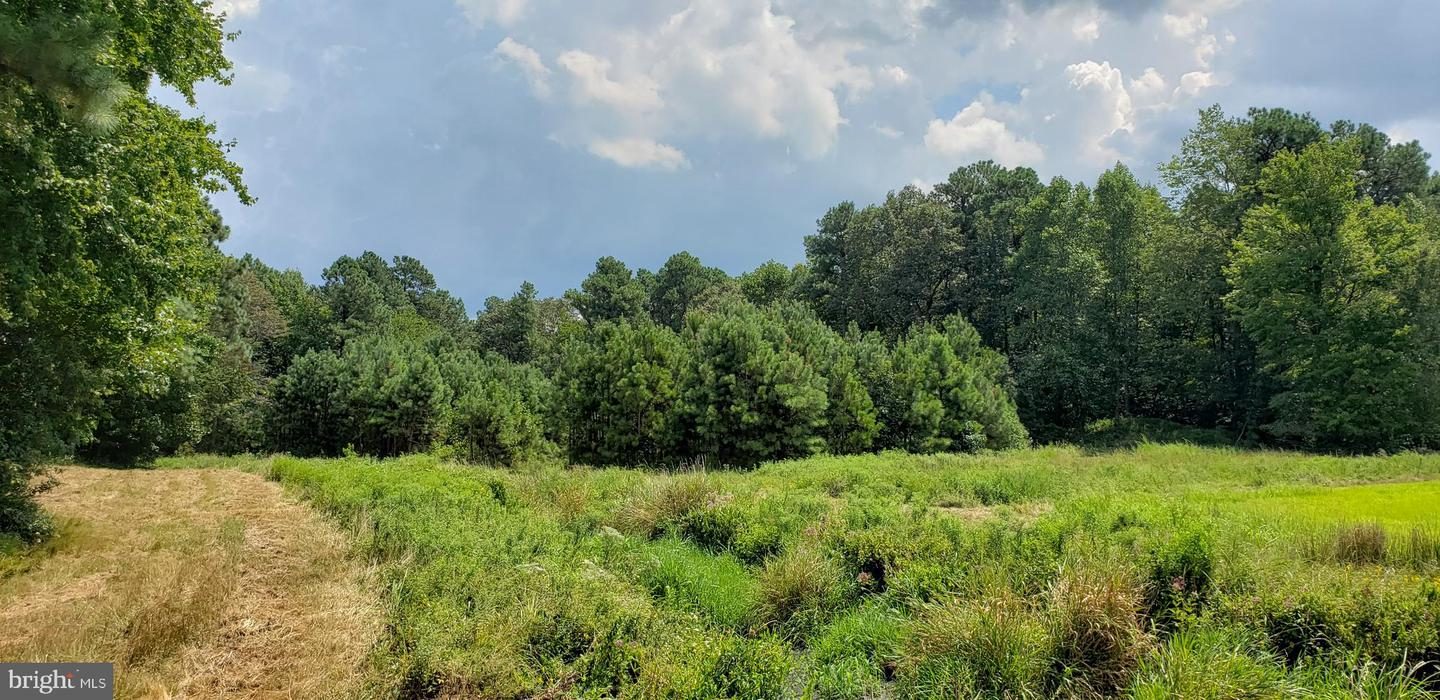Additional photo for property listing at  Greenwood, Delaware 19950 United States