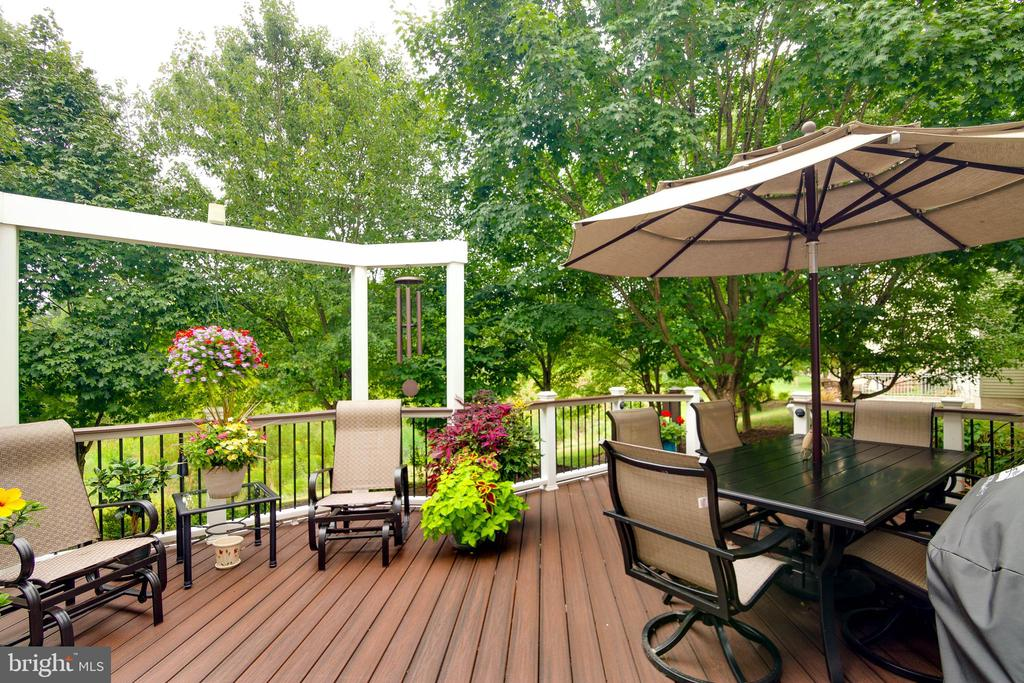 Trex deck - 43096 BINKLEY CIR, LEESBURG