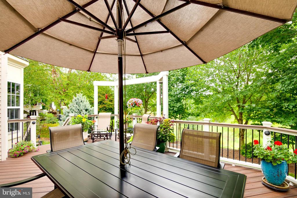 Outdoor entertaining space - 43096 BINKLEY CIR, LEESBURG