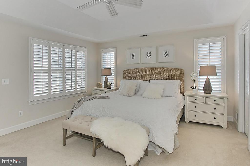 Raised Ceiling, CF and Plantation Shutters - 23008 WHITE IBIS DR, BRAMBLETON