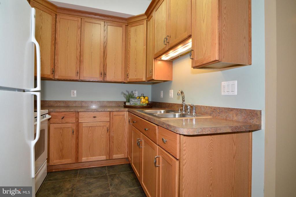 LL has kitchenette perfect for in-laws or nanny - 1700 BESLEY RD, VIENNA