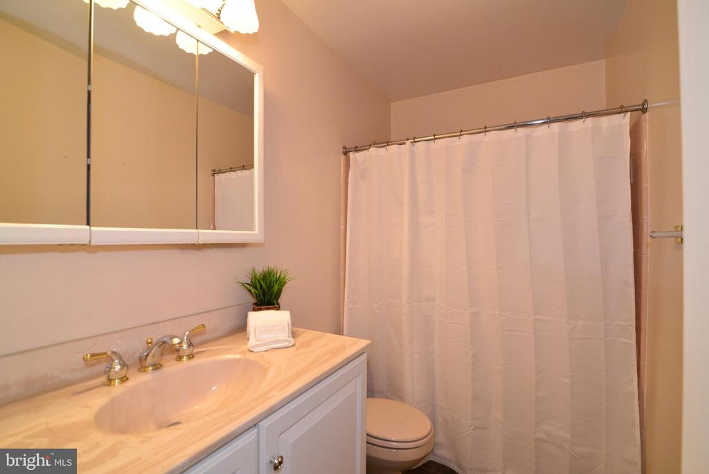 LL has full bathroom - 1700 BESLEY RD, VIENNA