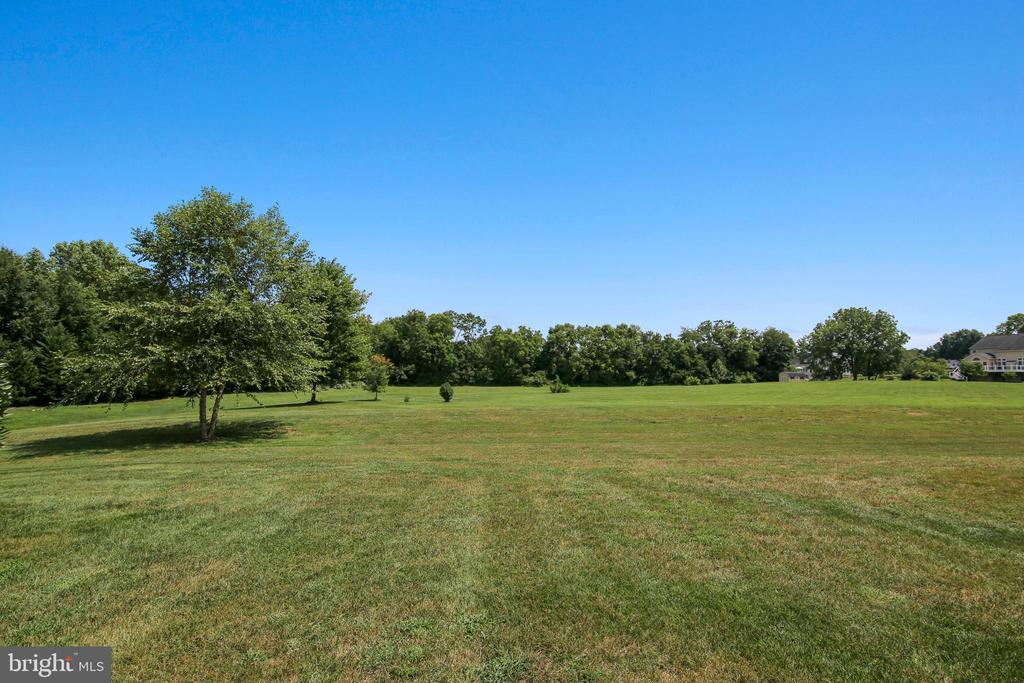 Rear View - 17262 NORTHWOODS PL, HAMILTON
