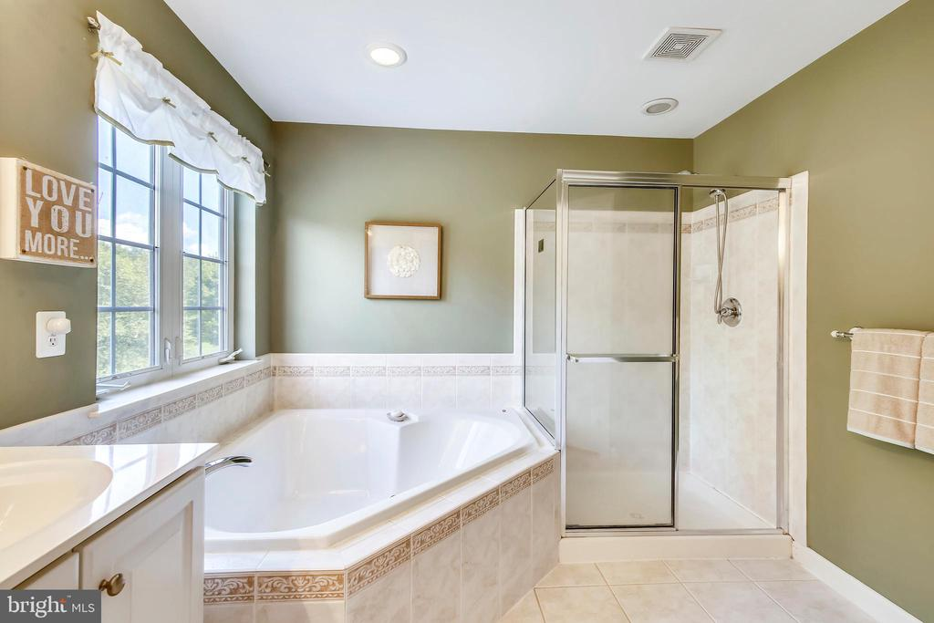Master Bath separate shower and soaking tub - 17262 NORTHWOODS PL, HAMILTON