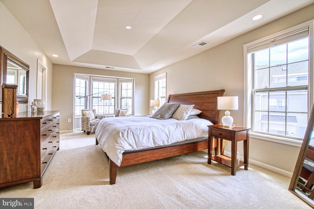 Large Master Bedroom - 22478 CAMBRIDGEPORT SQ, ASHBURN