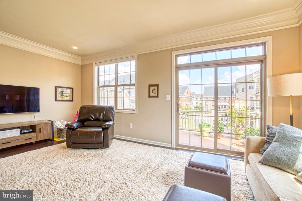 Family Room Leads to Outdoor Deck - 22478 CAMBRIDGEPORT SQ, ASHBURN