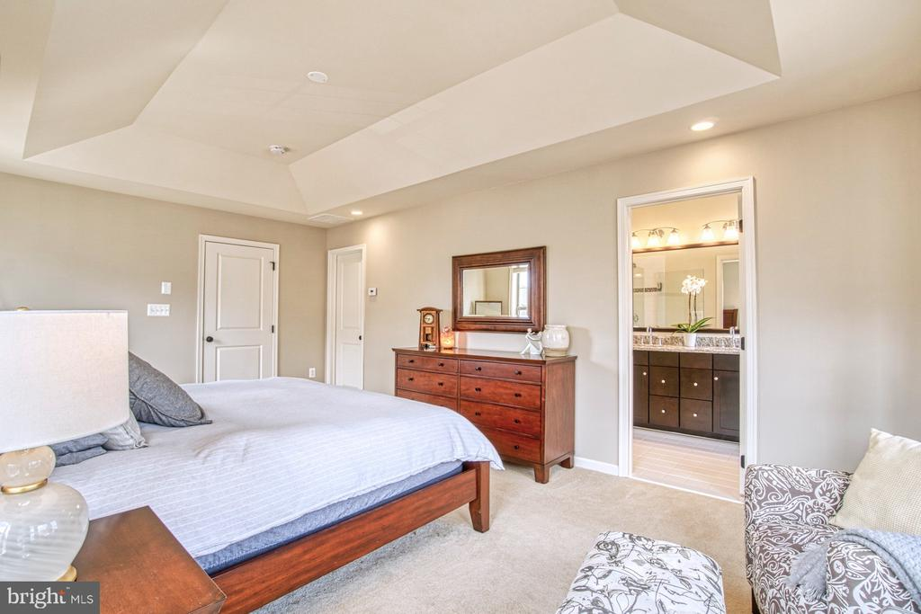 Master Bedroom has Huge Walk-In Closet - 22478 CAMBRIDGEPORT SQ, ASHBURN