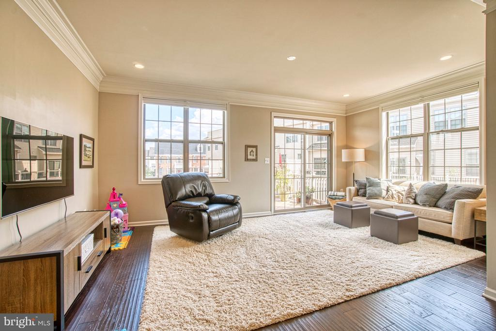 Perfect Space for Family Gatherings - 22478 CAMBRIDGEPORT SQ, ASHBURN