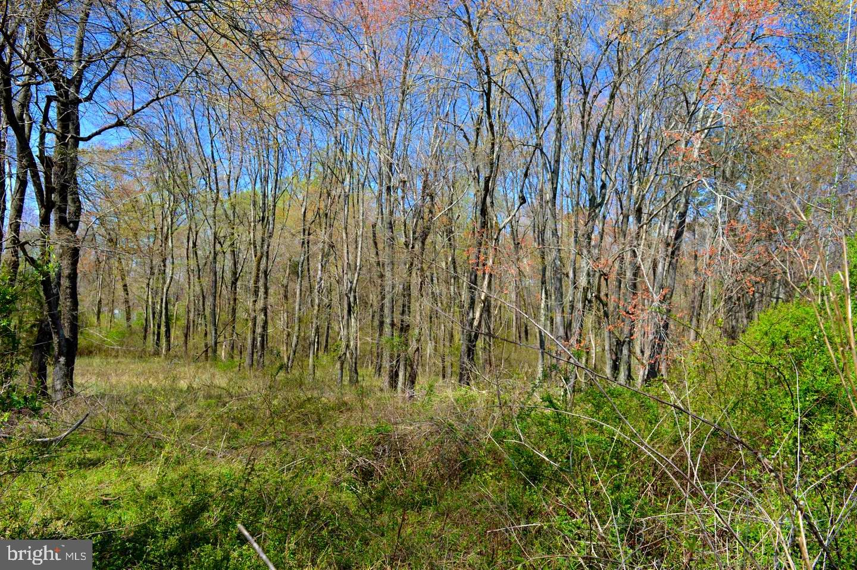 Terrain pour l Vente à Barboursville, Virginia 22923 États-Unis
