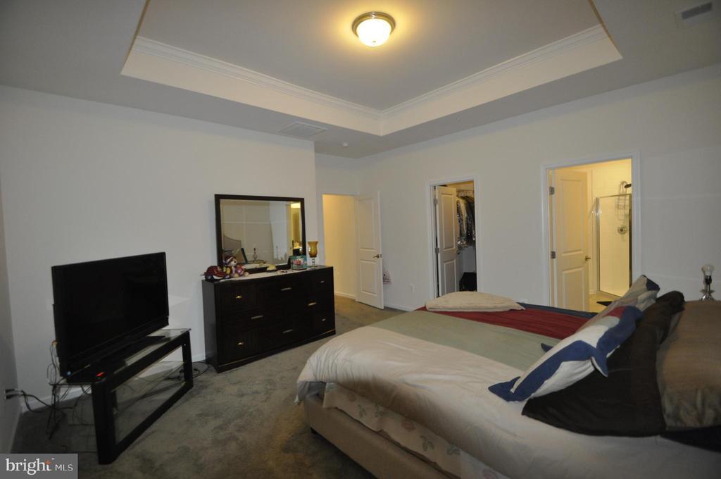 Master Bedroom - 1421 VILLAGE GREEN WAY, BRUNSWICK