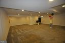 Recreation Room - 1421 VILLAGE GREEN WAY, BRUNSWICK