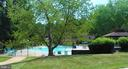 Outdoor Pool - 5804 ROYAL RIDGE DR #H, SPRINGFIELD