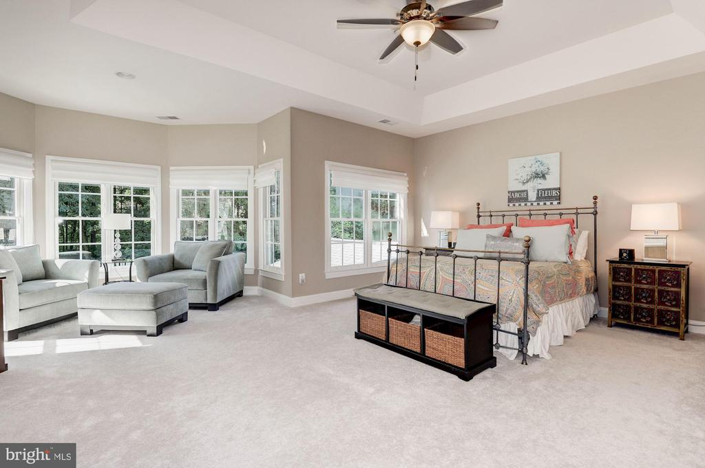 Double door entry into the  huge master suite - 11691 CARIS GLENNE DR, HERNDON