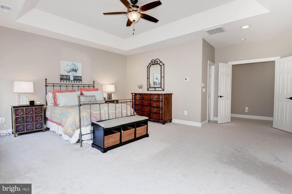 Master suite as seen from the sitting area - 11691 CARIS GLENNE DR, HERNDON
