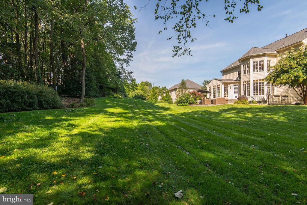 Picturesque yard perfect for barbecues - 11691 CARIS GLENNE DR, HERNDON