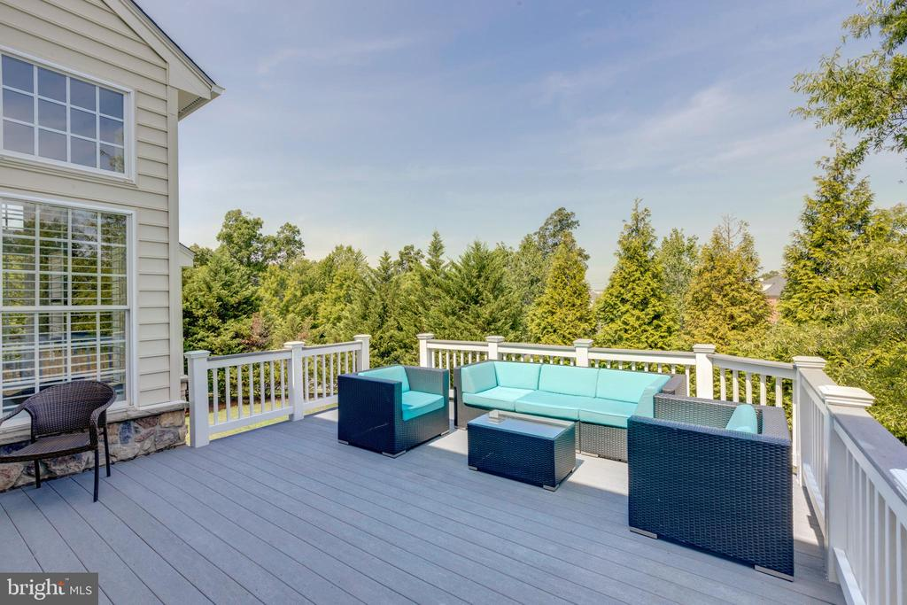 Large private deck - 42022 GLASS MOUNTAIN PL, ALDIE