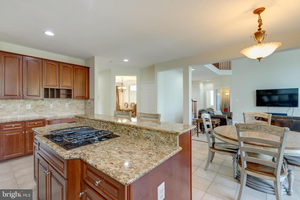 kitchen with granite counters - 42022 GLASS MOUNTAIN PL, ALDIE