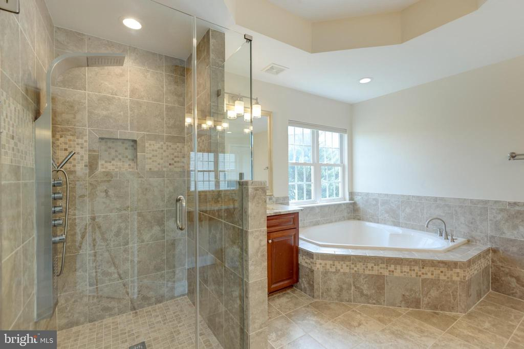 Custom shower recently updated frame less door - 42022 GLASS MOUNTAIN PL, ALDIE