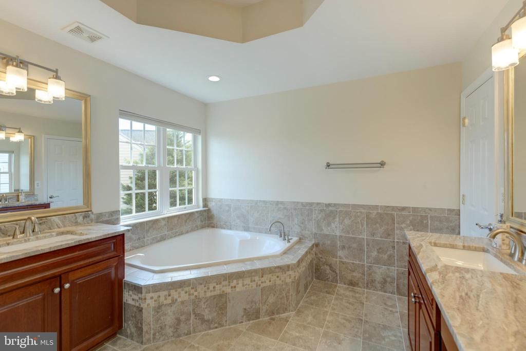 Master bath - recently upgraded - 42022 GLASS MOUNTAIN PL, ALDIE