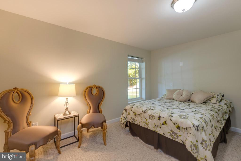 5th Bedroom in the basement - 42022 GLASS MOUNTAIN PL, ALDIE