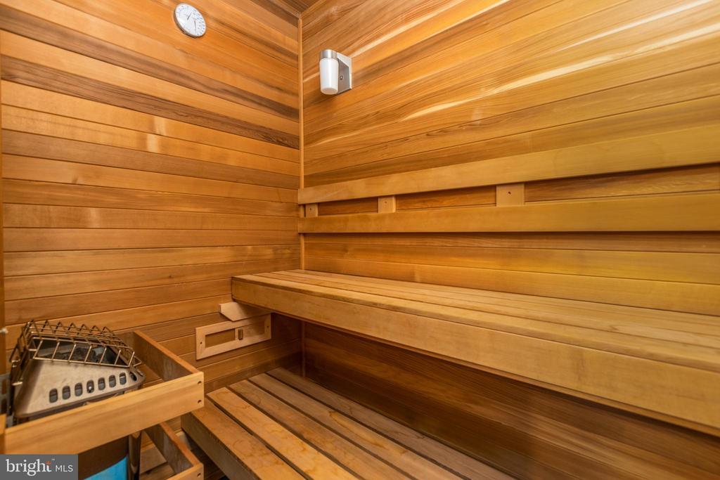 Enjoy your on sauna - 42022 GLASS MOUNTAIN PL, ALDIE