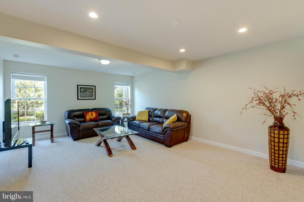 Basement with full windows - 42022 GLASS MOUNTAIN PL, ALDIE