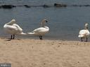 Short drive to beaches, shopping & restaurants! - 144 AQUA LN, COLONIAL BEACH